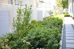 緑が敷地を囲っています。四季折々に花が咲くのだそう。(2014-09-28,共用部,OTHER,1F)