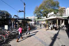 各線・日本橋駅の様子。(2010-11-27,共用部,ENVIRONMENT,1F)