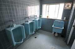 男性用トイレの様子2。(2013-05-21,共用部,TOILET,2F)