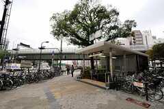各線・日本橋駅の様子。(2013-10-29,共用部,ENVIRONMENT,1F)