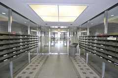 マンションのエントランスホール。(2011-11-29,周辺環境,ENTRANCE,1F)
