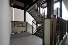 階段の様子。(2011-11-29,共用部,OTHER,7F)