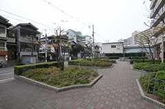 マンション敷地内の様子。(2011-11-29,共用部,ENVIRONMENT,1F)