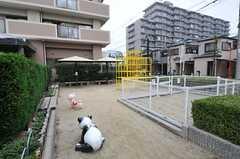 マンション敷地内にある公園。(2011-11-29,共用部,ENVIRONMENT,1F)
