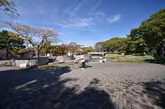 駅前にある住吉公園の様子。(2015-11-16,共用部,ENVIRONMENT,1F)