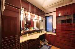 洗面台の様子。(2010-11-26,共用部,OTHER,1F)