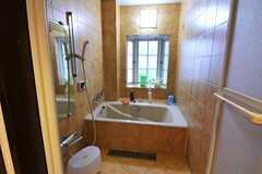 バスルームの様子。(2010-11-26,共用部,BATH,1F)