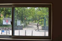 窓からは隣の公園の緑が見えます。(2019-05-15,共用部,LIVINGROOM,1F)