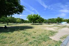 八幡屋公園の様子。(2019-05-15,共用部,ENVIRONMENT,1F)