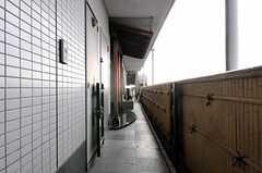 エレベーターを下りるとこんな感じ。(2012-09-11,共用部,OTHER,10F)