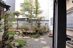 庭の様子。(2014-03-06,共用部,OTHER,1F)