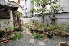 庭の様子2。(2014-03-06,共用部,OTHER,1F)
