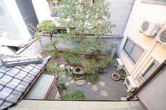 廊下から見下ろした庭の様子。(2014-03-06,共用部,OTHER,2F)