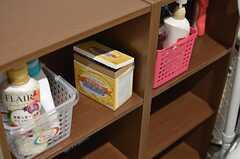 洗剤やシャンプーなどを置いておける棚があります。(2013-09-19,共用部,OTHER,2F)
