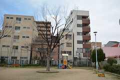 裏手には公園があります。(2015-03-16,共用部,ENVIRONMENT,7F)