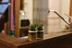 カウンターテーブルには観葉植物が飾られています。(2019-03-14,共用部,LIVINGROOM,1F)