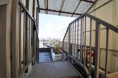 屋上への階段の様子。(2010-11-26,共用部,OTHER,8F)