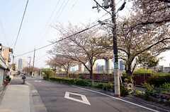 シェアハウスから各線・天神橋筋六丁目へ向かう道の様子。(2013-04-09,共用部,ENVIRONMENT,1F)