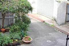 窓からは外の路地がチラリ。(102号室)(2012-10-25,専有部,ROOM,1F)