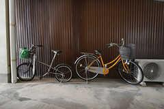 自転車置き場の様子。共用の自転車もあります。(2016-08-23,共用部,GARAGE,1F)