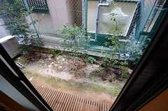 専用の庭もあります。(102号室)(2015-03-30,専有部,ROOM,1F)