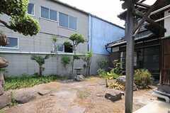 庭の様子3。(2013-08-22,共用部,OTHER,1F)