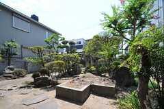 表側の庭の様子2。今後トマトを植えたりすることも考えているそう。(2013-08-22,共用部,OTHER,1F)
