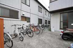 自転車置場の様子。奥が物干しスペースにつながっています。(2012-05-08,共用部,GARAGE,1F)
