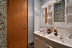 洗面スペースの様子。奥のドアがトイレです。(2016-11-15,共用部,OTHER,2F)