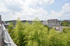 屋上からの景色。(2016-08-01,共用部,OTHER,4F)