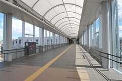JR東海道本線・岸辺駅へはコンコースを通ります。(2012-09-13,共用部,ENVIRONMENT,1F)