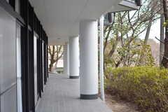 廊下の窓からはラウンジの窓が見えます。(2017-03-07,共用部,OTHER,1F)