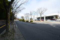 駅からシェアハウスへ向かう道の様子。(2017-03-07,共用部,ENVIRONMENT,1F)