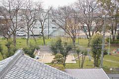 屋上からは近くの公園が見えます。(2017-04-05,共用部,OTHER,4F)
