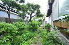 庭の様子2。(2015-07-07,共用部,OTHER,1F)