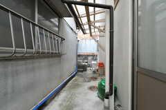 屋根のあるスペースに、物干し竿を設置予定。(2019-10-17,共用部,LAUNDRY,1F)