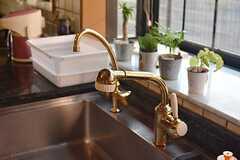 金色の水栓です。(2014-10-16,共用部,KITCHEN,1F)