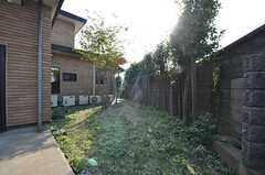 裏庭の様子。(2014-10-16,共用部,OTHER,1F)
