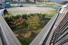 窓からは庭が見降ろせます。(202号室)(2014-10-16,専有部,ROOM,2F)