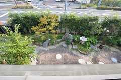 ベランダから見下ろした庭。(203号室)(2014-10-16,専有部,ROOM,2F)