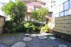 庭の様子。(2013-11-06,共用部,OTHER,1F)
