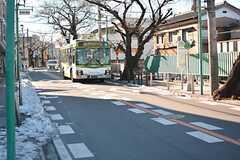 近くの商店街の様子。徒歩5分ほどで最寄りのバス停に到着します。(2016-01-20,共用部,ENVIRONMENT,1F)