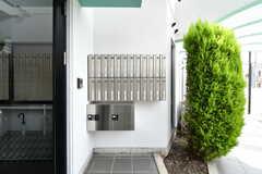 玄関の横には郵便受けと宅配ボックスが設置されています。(2021-07-07,周辺環境,ENTRANCE,1F)