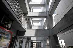 コンクリートの柱が入り組んでいて圧巻。(2012-05-15,共用部,OTHER,3F)