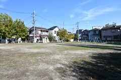 すぐ目の前にある公園の様子。(2017-11-07,共用部,ENVIRONMENT,1F)