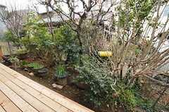 庭の様子。(2012-03-19,共用部,OTHER,1F)