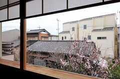 雪見障子からは梅が見えます。(202号室)(2012-03-19,専有部,ROOM,2F)