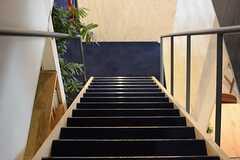 階段の様子。(2015-04-28,共用部,OTHER,2F)