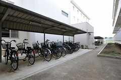 駐輪場の様子2。(2012-05-30,共用部,GARAGE,1F)
