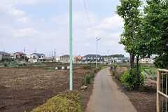 JR武蔵野線・新座駅からシェアハウスへ向かう道の様子。のどかです。(2012-05-30,共用部,ENVIRONMENT,1F)